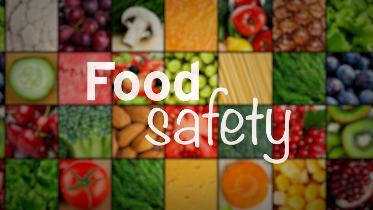 food safety consultant
