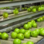 PLI Scheme for Food Processing Industry